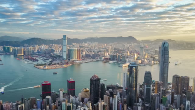 aerial view hongkong morning - grandangolo tecnica fotografica video stock e b–roll