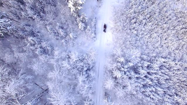 vídeos y material grabado en eventos de stock de vista aérea: caballo-trineo en un paraíso invernal - austria