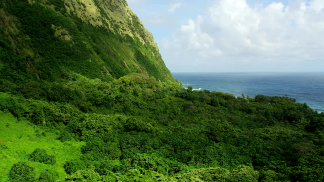 aerial view jurassic coastline tropical rainforests big island - jurassic stock videos & royalty-free footage