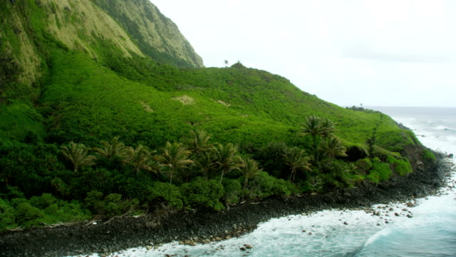aerial view jurassic fertile coastline tropical rainforests hawaii - jurassic stock videos & royalty-free footage