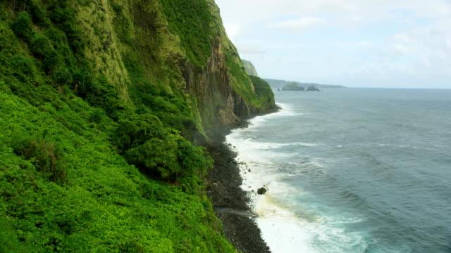 aerial view jurassic fertile valley rainforests rock cliffs - jurassic stock videos & royalty-free footage