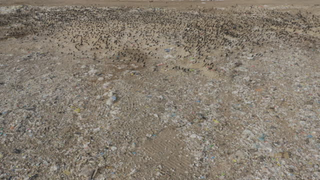aerial view landfill full of trash - cellophane stock videos & royalty-free footage