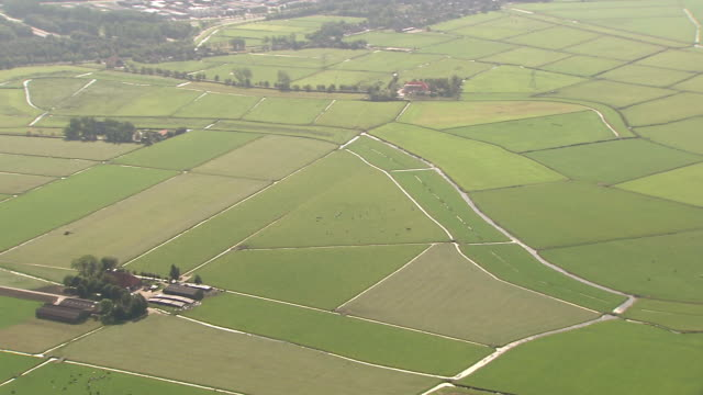 hd aerial view landscape, farmland, grassland, meadow, farms, agriculture, river - polder stock videos and b-roll footage