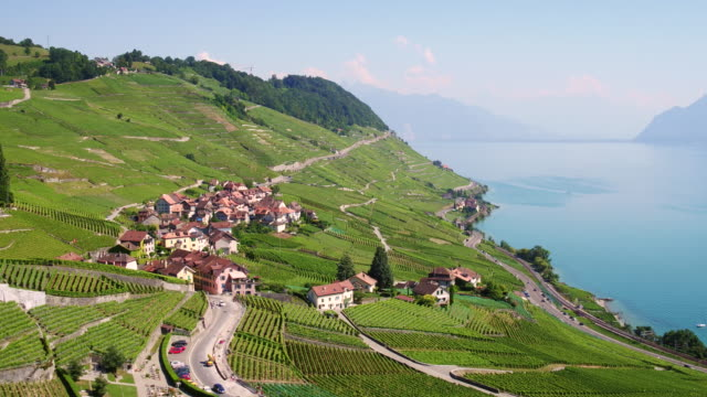 vídeos de stock e filmes b-roll de aerial view lavaux vineyard - switzerland