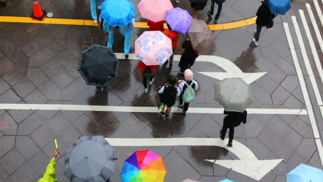 vídeos de stock e filmes b-roll de aerial view looking down on crowd of people walking with umbrellas - marca de estrada