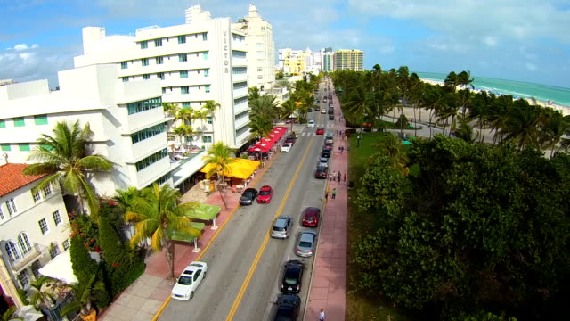 aerial view low over ocean drive miami south beach, looking over palm trees to ocean. - south beach stock videos & royalty-free footage