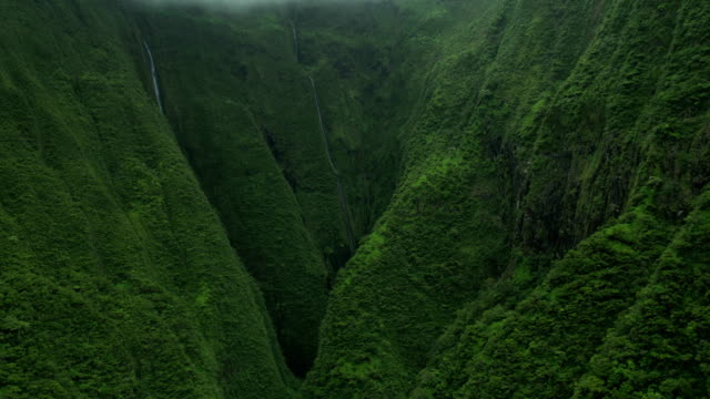 aerial view maui waterfall in tropical valley rainforest - polynesian ethnicity stock videos & royalty-free footage