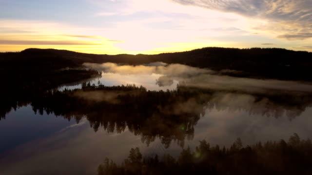vidéos et rushes de aerial view - misty forest and colorful sunrise - grandiose