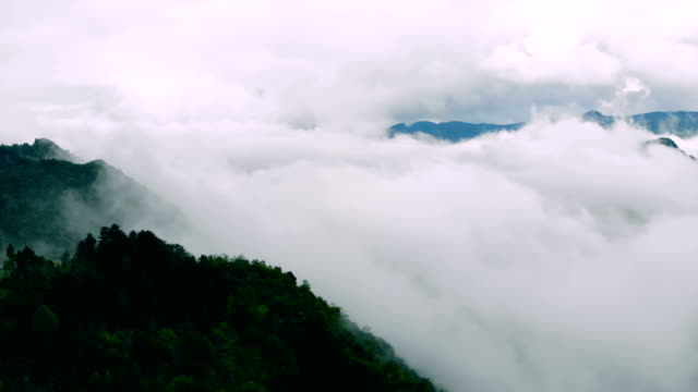 aerial view mountains and forest with clouds - extinct stock videos & royalty-free footage