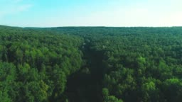 4K aerial view moves forward along green forest, enriched with dense trees. Amazing nature background. 4K.