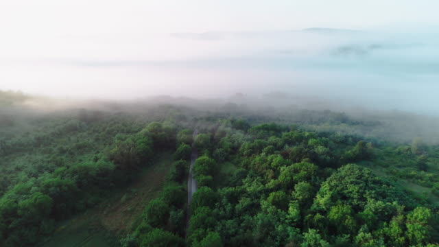 aerial view. nature and cloudscape. mist and fog over the forests creating simplicity and beauty in the landscape. - mindfulness stock videos & royalty-free footage