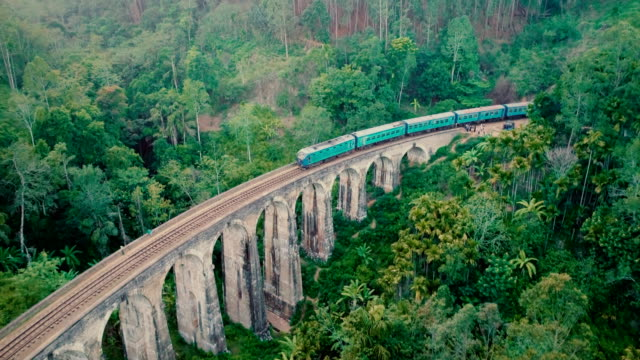 aerial view nine arch bridge in sri lanka - treno video stock e b–roll