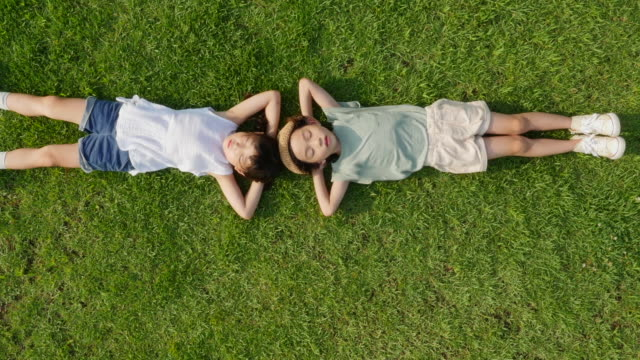 vídeos de stock, filmes e b-roll de aerial view of a boy and a girl lying on lawn in summer at seoulforest (the third largest park in seoul city) - mais zoom