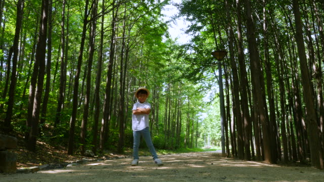 Aerial view of a boy posturing on premenade along trees at Seoulforest (the third largest park in Seoul city) in summer