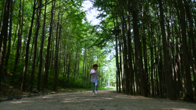 stockvideo's en b-roll-footage met aerial view of a boy posturing on premenade along trees at seoulforest (the third largest park in seoul city) in summer - koreaanse etniciteit