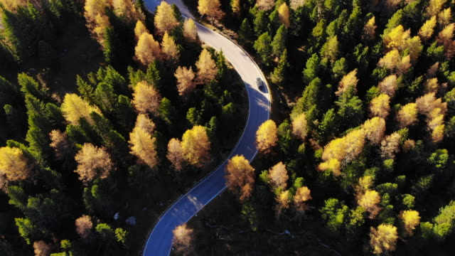 stockvideo's en b-roll-footage met aerial view of a car driving in the dolomites mountains with autumn colors. - majestueus
