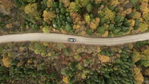 aerial view of a car on dirt road in forest - sports utility vehicle stock videos & royalty-free footage