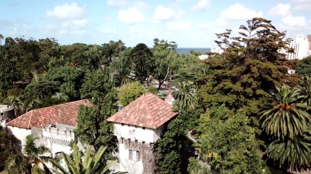 Aerial view of a Castle and palm trees in Uruguay
