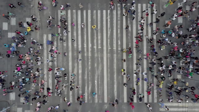 aerial view of a crossing in mexico city - crowd of people stock videos & royalty-free footage