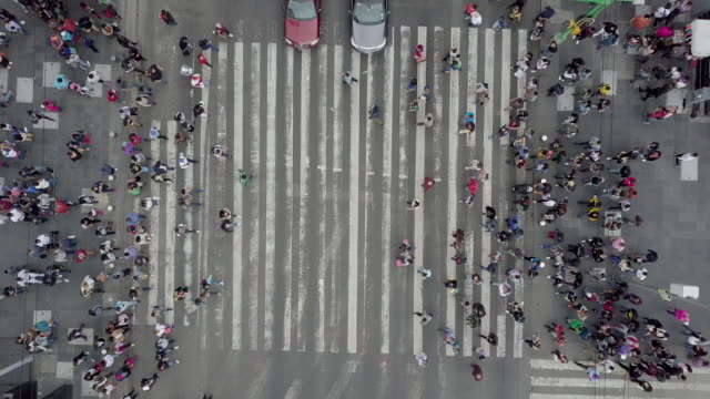 aerial view of a crossing in mexico city - zebra crossing stock videos & royalty-free footage