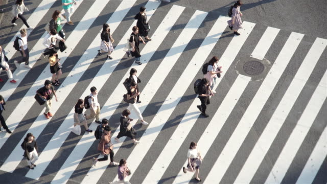 aerial view of a crossing in shibuya, tokyo, japan. - road junction stock videos & royalty-free footage
