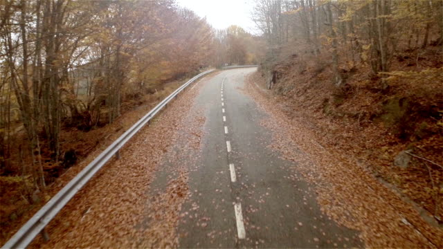 vidéos et rushes de aerial view of a empty road in autumn - 20 secondes et plus