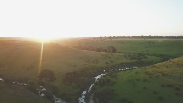 aerial view of a farm at sunset in victoria, australia - farm stock videos & royalty-free footage