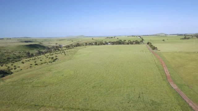 Aerial view of a farm in Victoria, Australia
