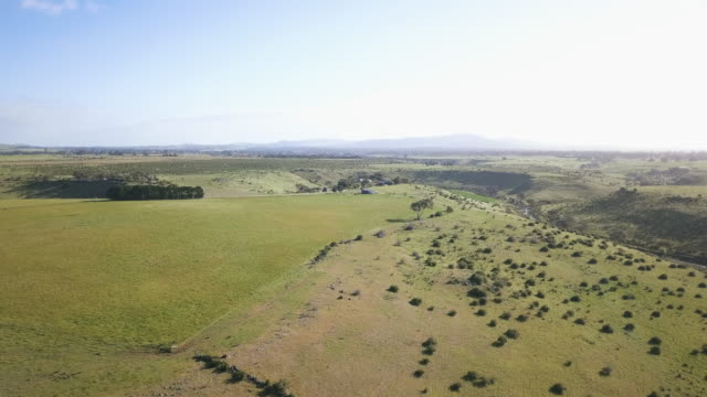 aerial view of a farm in victoria, australia - victoria australia stock videos & royalty-free footage