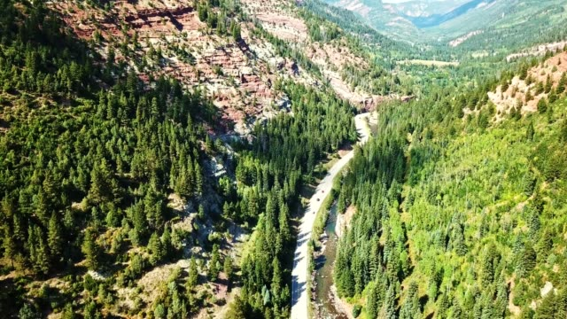 aerial view of a forest in the colorado state - colorado stock videos & royalty-free footage
