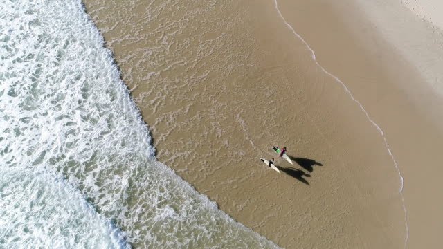 Aerial view of a group of surfers going into the ocean