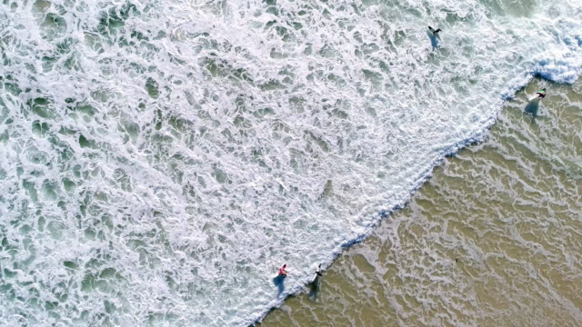 aerial view of a group of surfers going into the ocean - seascape stock videos & royalty-free footage