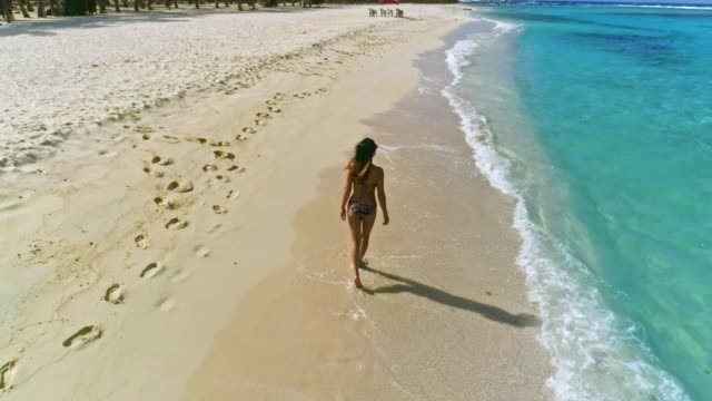 aerial view of a hispanic young woman walking relaxed on a tropical island beach with coconut trees, sand, waves and turquoise waters - solitude stock videos & royalty-free footage