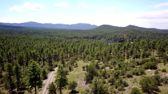 Aerial view of a Lake in middle of Pine Tree Forest in Prescott Arizona