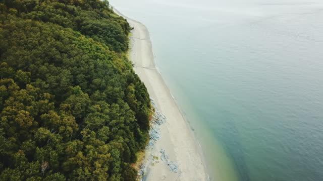 aerial view of a lake shore - lago superiore video stock e b–roll