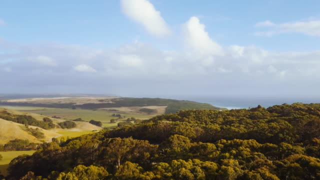 aerial view of a landscape, in glenaire, great ocean road, australia - great ocean road stock videos & royalty-free footage