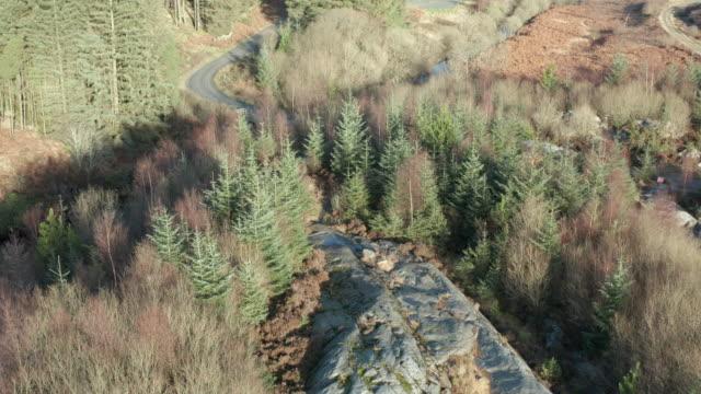 ダンフリースとギャロウェイのスコットランドの森の地域で花崗岩の大きな露頭の空中写真 - johnfscott点の映像素材/bロール