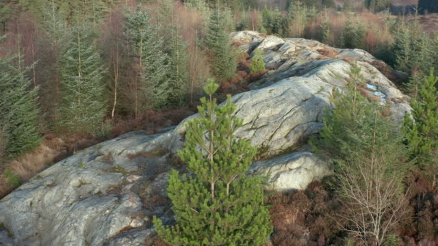 aerial view of a large outcrop of granite in an area of scottish forest in dumfries and galloway - extreme terrain stock videos & royalty-free footage