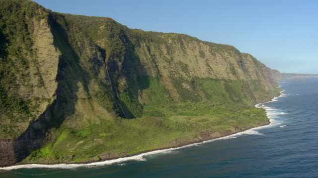 Aerial view of a lush tropical shore on Hawaii's Hamakua Coast.