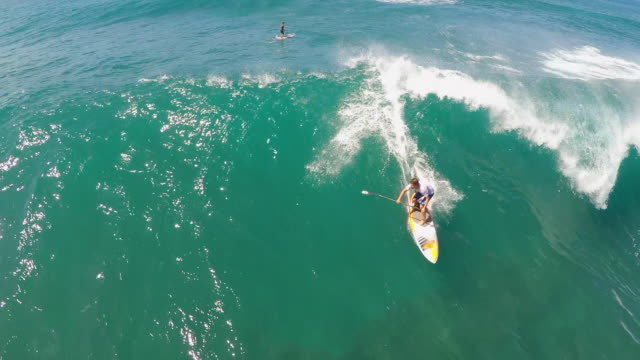 aerial view of a man sup stand-up paddleboard surfing in hawaii. - pazifik stock-videos und b-roll-filmmaterial