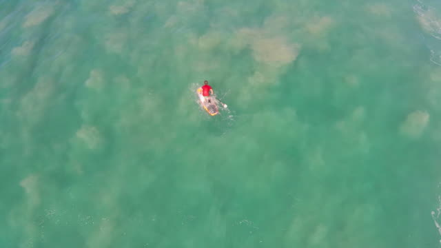 Aerial view of a man sup stand-up paddleboard surfing in Hawaii.