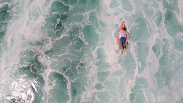 aerial view of a man sup stand-up paddleboard surfing in waimea, hawaii. - surfboard stock videos and b-roll footage