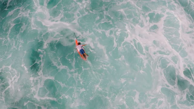 vidéos et rushes de aerial view of a man sup stand-up paddleboard surfing in waimea, hawaii. - t shirt