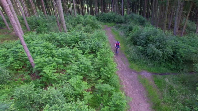 aerial view of a mountain biker on a scenic singletrack trail. - goodsportvideo stock videos and b-roll footage