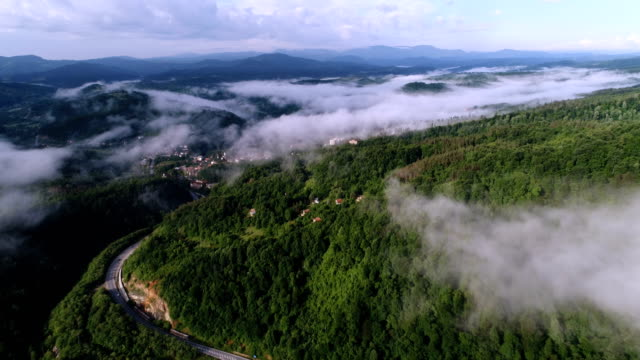 Aerial view of a mountain road in between the forest trees covered by the morning fog in springtime.