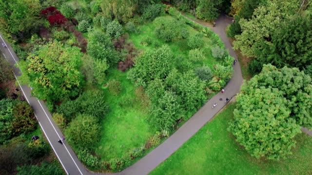 Luftbild von einem park im Herbst