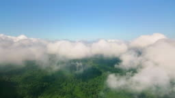 Aerial view of a rain forest mountain looking through the clouds,4K DCI