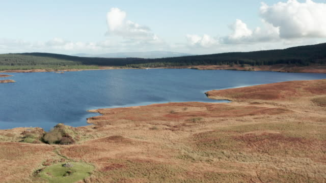 aerial view of a remote scottish loch in south west scotland - lake stock videos & royalty-free footage