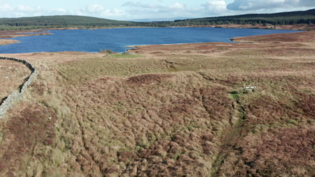 aerial view of a remote scottish loch in south west scotland - lakeshore stock videos & royalty-free footage