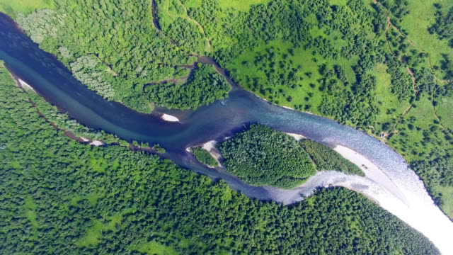 aerial view of a river snaking through a hilly forested landscape,kamchatka peninsula, russia - 川点の映像素材/bロール